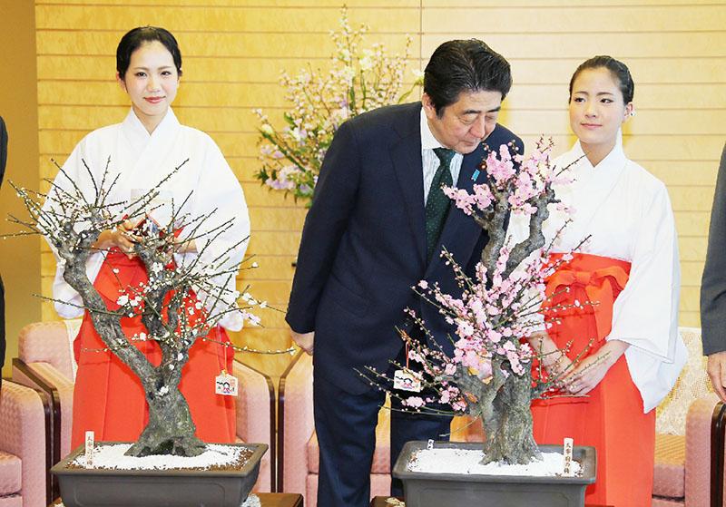 安倍首相「いい香りだ」、太宰府の梅に一息