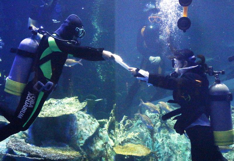 三重県鳥羽市の鳥羽水族館で水中入社式
