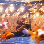「お江戸の金魚ワンダーランド」がプレオープン