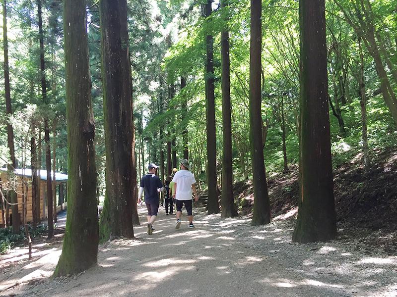 韓国の山はお年寄りでも歩きやすいように整備されている道が多い。
