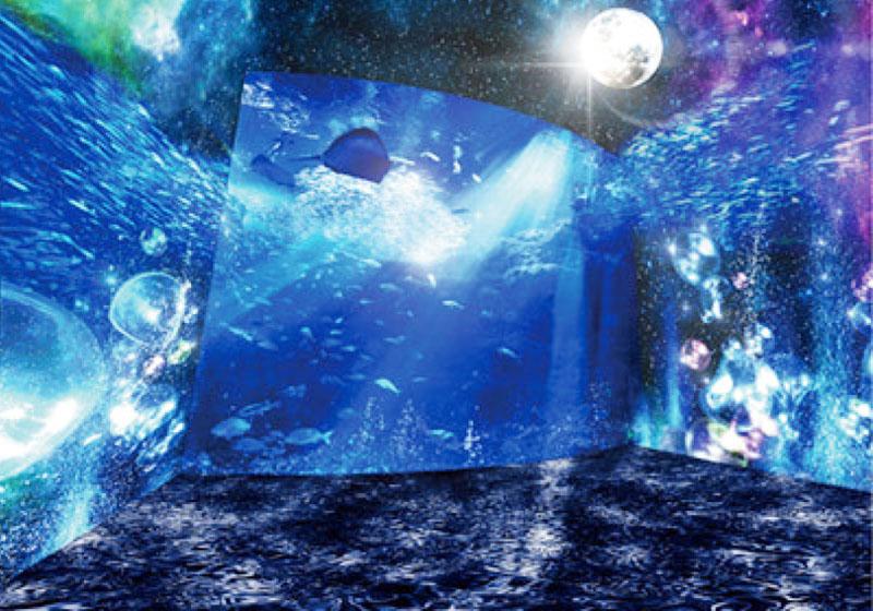 月夜の夜、魚たちと同じ夢を見る感動体験を