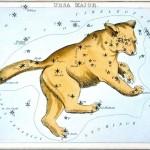 英国で1824年に出版されたおおぐま座の絵。背中の後半から尾が北斗七星。尾の先端の恒星「ベネトナシュ」は国際天文学連合(IAU)により別名「アルカイド」が公式名称に決まった(IAU提供)