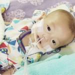 京都府福知山市の難病児心臓移植に募金呼び掛け