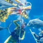 水中で魚に囲まれながら新年の「龍の舞」
