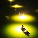 冬の風物詩、幻想的なシラスウナギ漁が最盛期