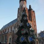 クラクフ中央広場 聖マリア教会と巨大なクリスマスツリーとともに