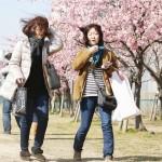 最大瞬間風速は東京都心で18m、関東地方で春一番
