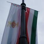 革命の日を祝祭し風に揺られる国旗