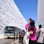 巨大雪壁の高さ、今年は19メートル