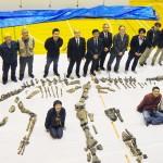 体長8メートル、国内で最大の恐竜全身骨格