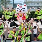 奇祭「猫おどり」、2万人が「にゃー!」