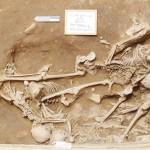 山形大、ペルーのシカン遺跡で人骨10人分を発見