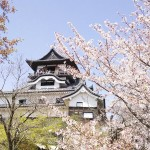 犬山城跡を史跡に、布田川断層帯は天然記念物