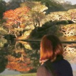 都心の水面に秋の気配、紅葉が見ごろ