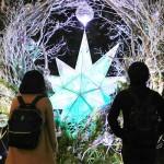 「星に願いを」、体験型アートイベント始まる