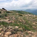 至仏山の特長である蛇紋岩