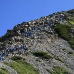 立山主峰の雄山に向けて登る富山県内の小学6年生
