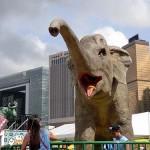 園内で人気のあった象の天奴(ティノ)。そのロボットにおもちゃのバナナを投げると鼻を縦に振って鳴く