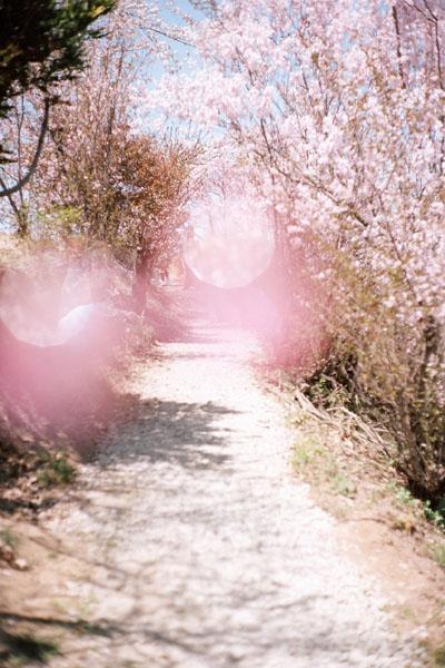 写真展「路上から世界を変えていく」