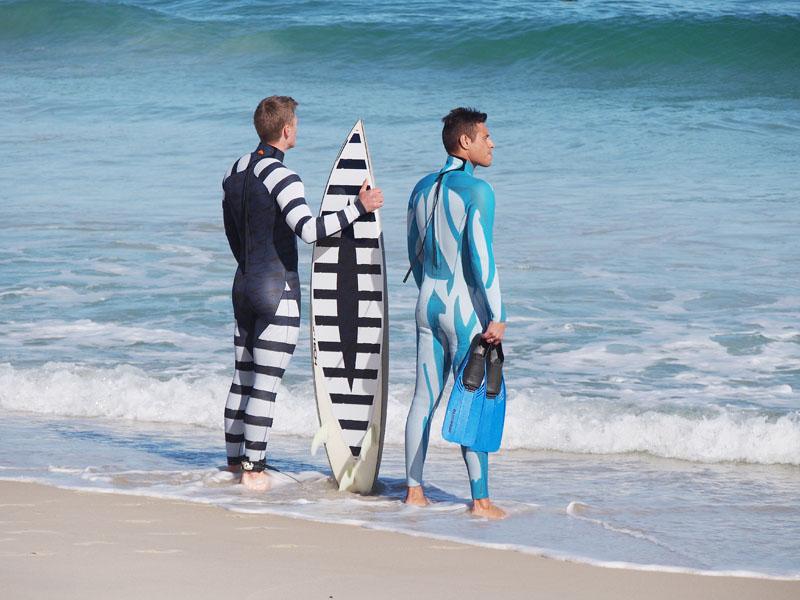 オーストラリアの海岸でサメ対策に本腰