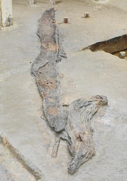 7500年前の丸木舟が見つかる、日本最古か
