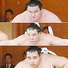 白鵬、日馬富士、鶴竜3横綱が勢ぞろい