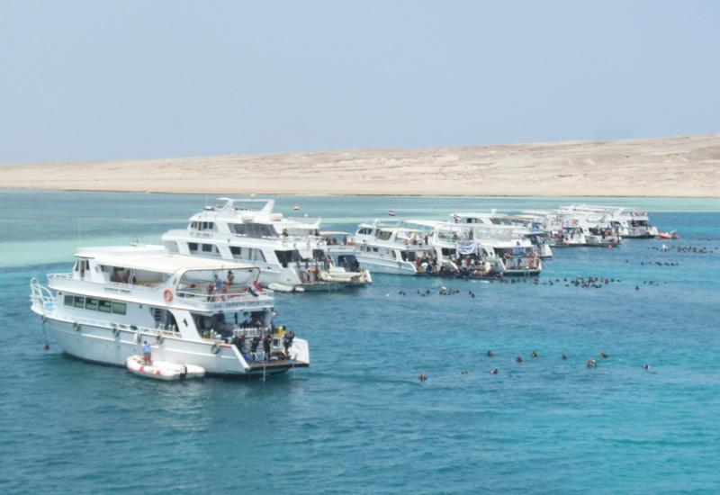 ハルガダ、3700人で「海の環境保護作戦」を実行