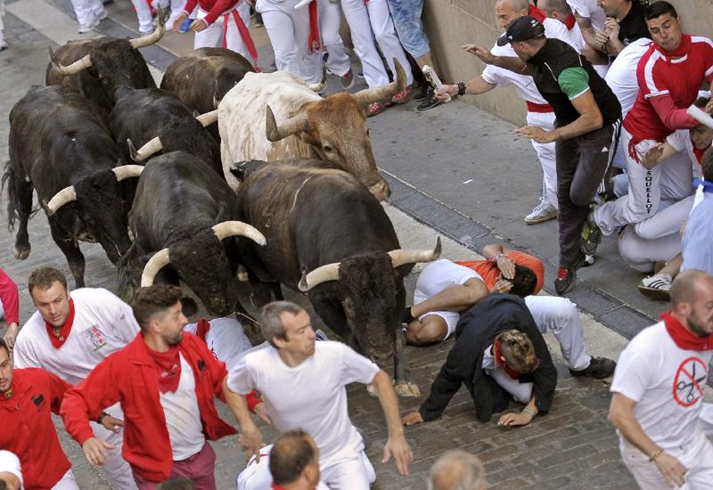 命懸けの牛追い祭「サン・フェルミン祭」
