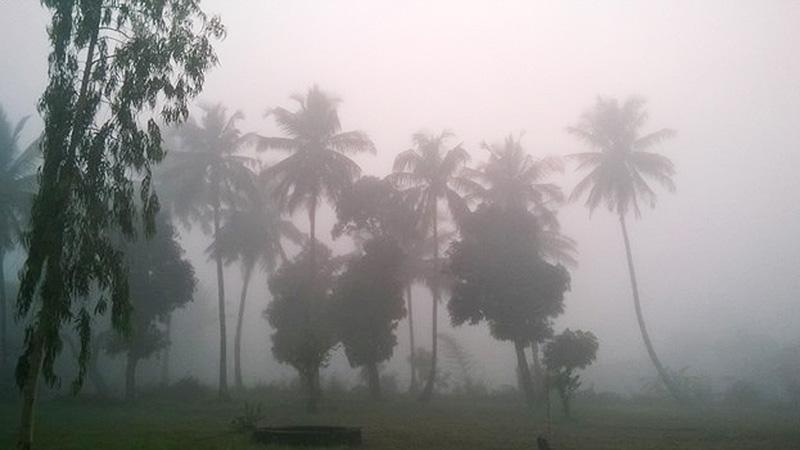 モザンビークで季節外れの朝霧が立ち込める