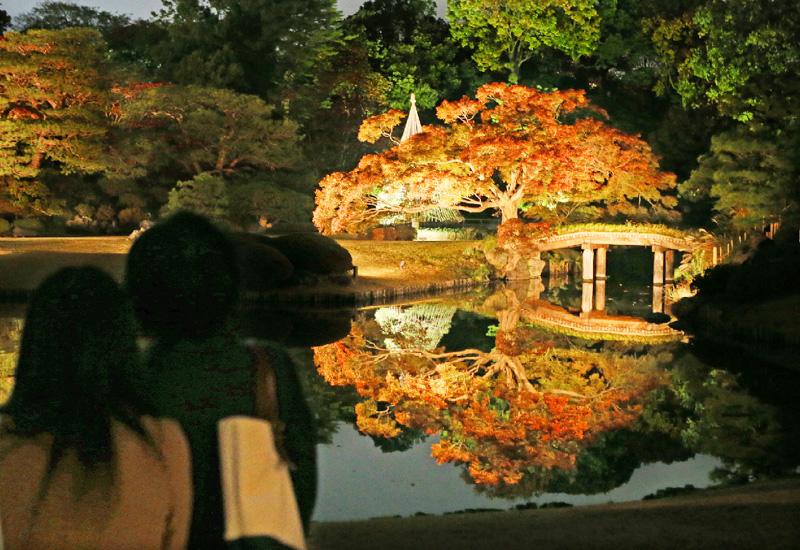 紅葉の名所、水面に浮かぶ六義園の秋
