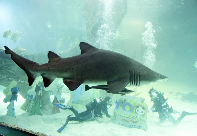 マドリードの水族館のちょっと怖いクリスマス