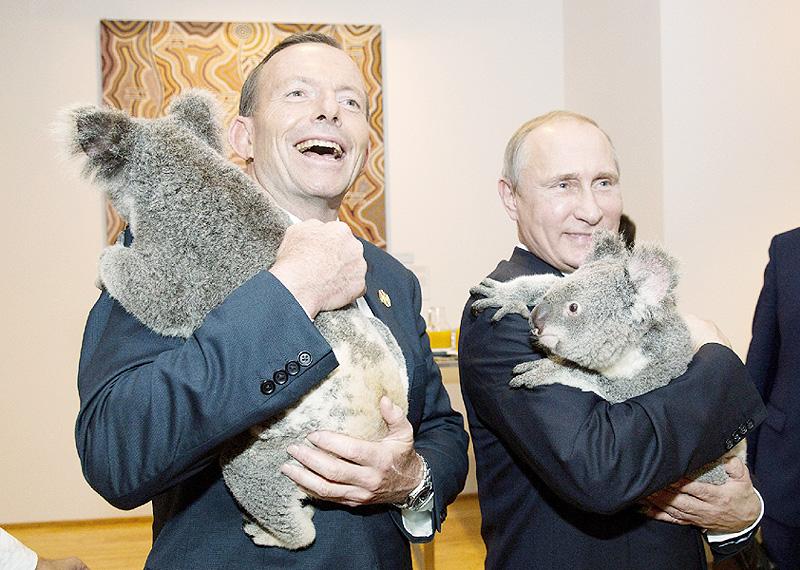 プーチン大統領と記念写真したコアラは無事?