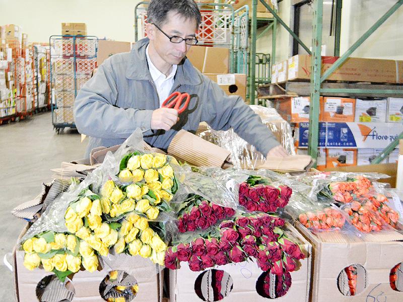 卒業シーズン前に、バラの輸入がピーク