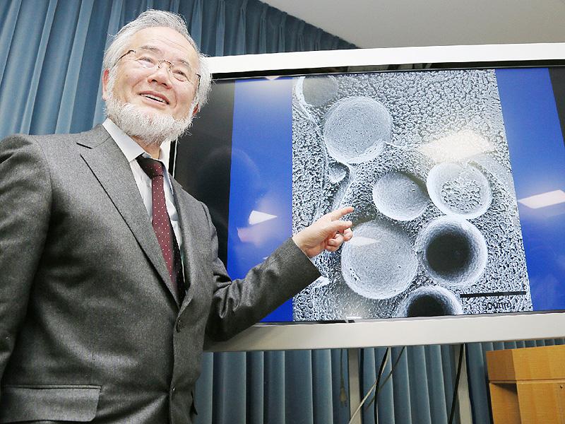 医学・生命科学分野、ガードナー国際賞が授与