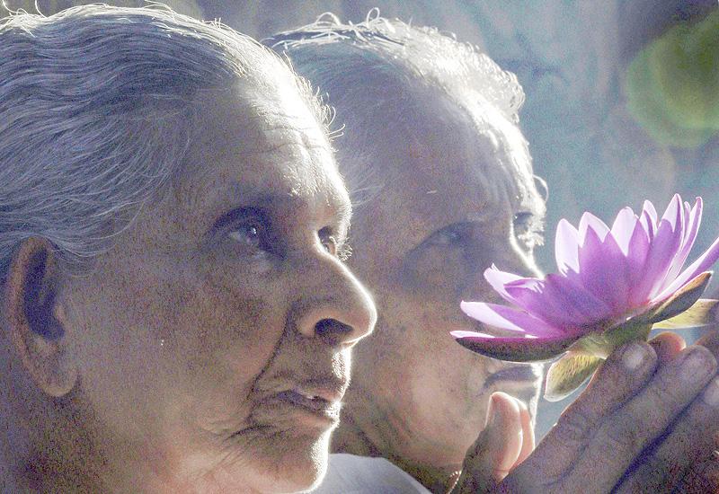 釈迦訪問の記念日、老夫婦が花を供える
