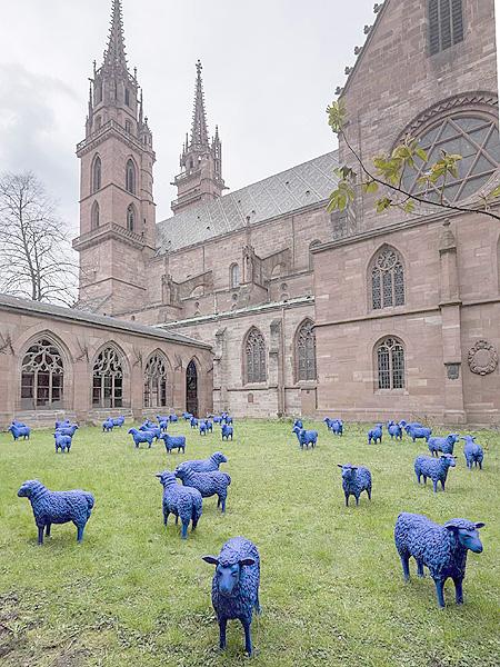50匹の羊、皆が同じオンリーワン