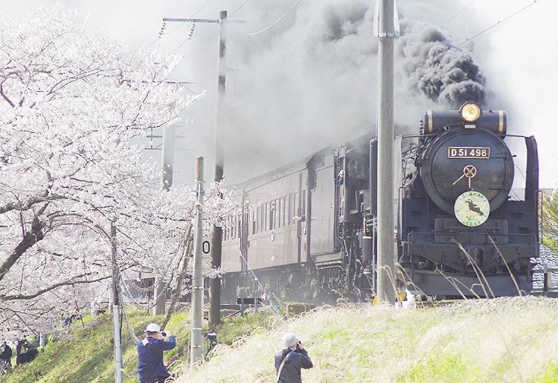 桜咲く福島、JR磐越西線を疾走するD51