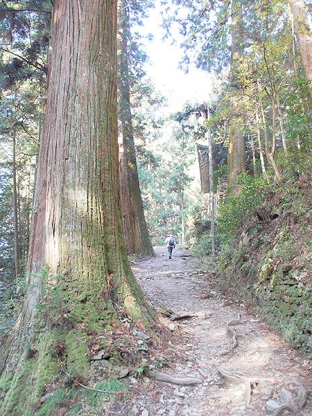 文化庁が「日本遺産」に18件を初めて認定